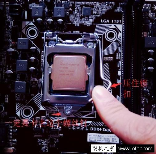 安装CPU和CPU散热器是装机重要的环节之一,虽然是重要环节,但是其安装步骤非常简单,只需要和老手学上一次肯定安装都没有问题了。下面装机之家分享一下安装intel CPU和原装CPU散热器图文教程,希望你在安装intel CPU和CPU散热器的时候能够参考本文教程独自完成安装。 拆开主板、intel CPU以及CPU原装散热器(AMD平台方法大同小异):